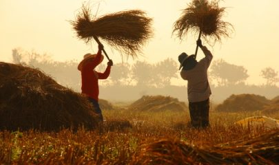 Fazenda é condenada a indenizar agricultor baleado por caseiro